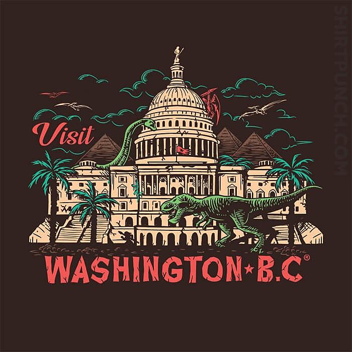 ShirtPunch: Washington B.C.