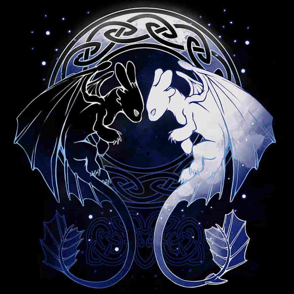 TeeTee: Two Dragons