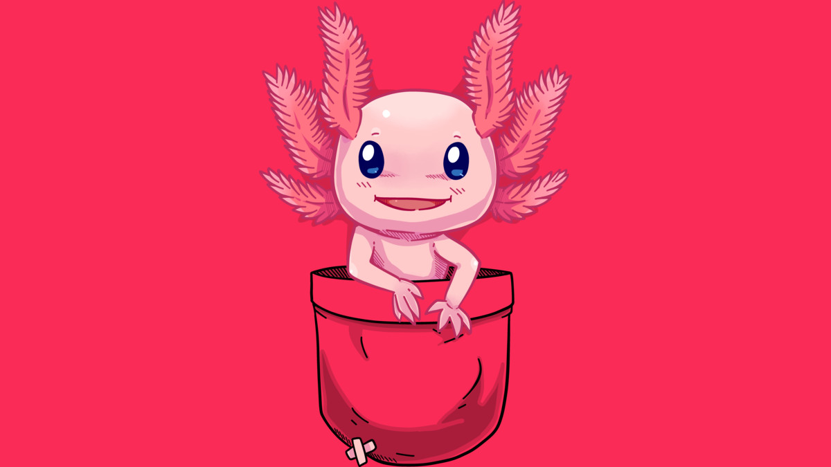 Design by Humans: Pocket Cute Axolotl