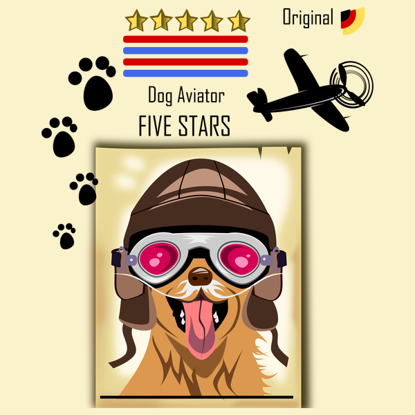 NeatoShop: Dog aviator
