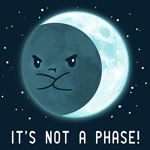 TeeTurtle: It's Not a Phase!