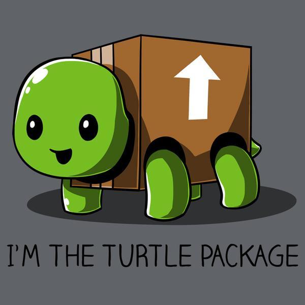 TeeTurtle: I'm the Turtle Pa...