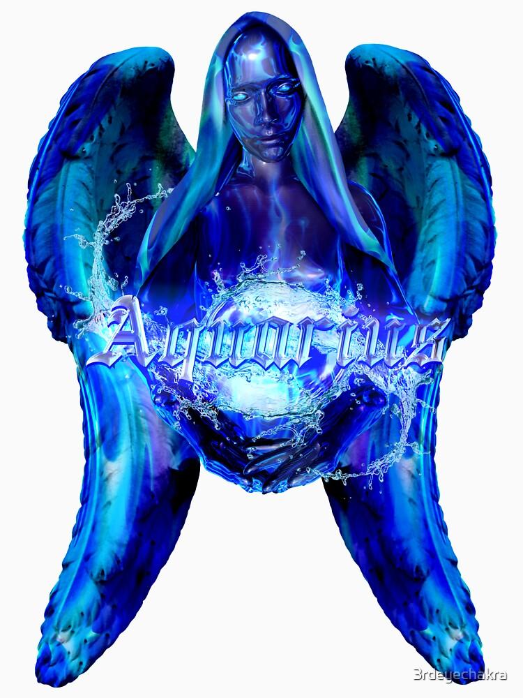 RedBubble: AQUARIUS AGENDA