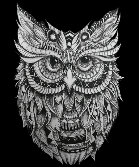 Qwertee: The Owl
