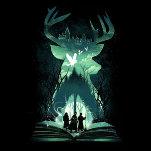 Once Upon a Tee: Book of Witchcraft and Wizardry