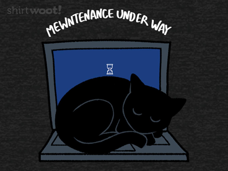 Woot!: Regular Mewntenance