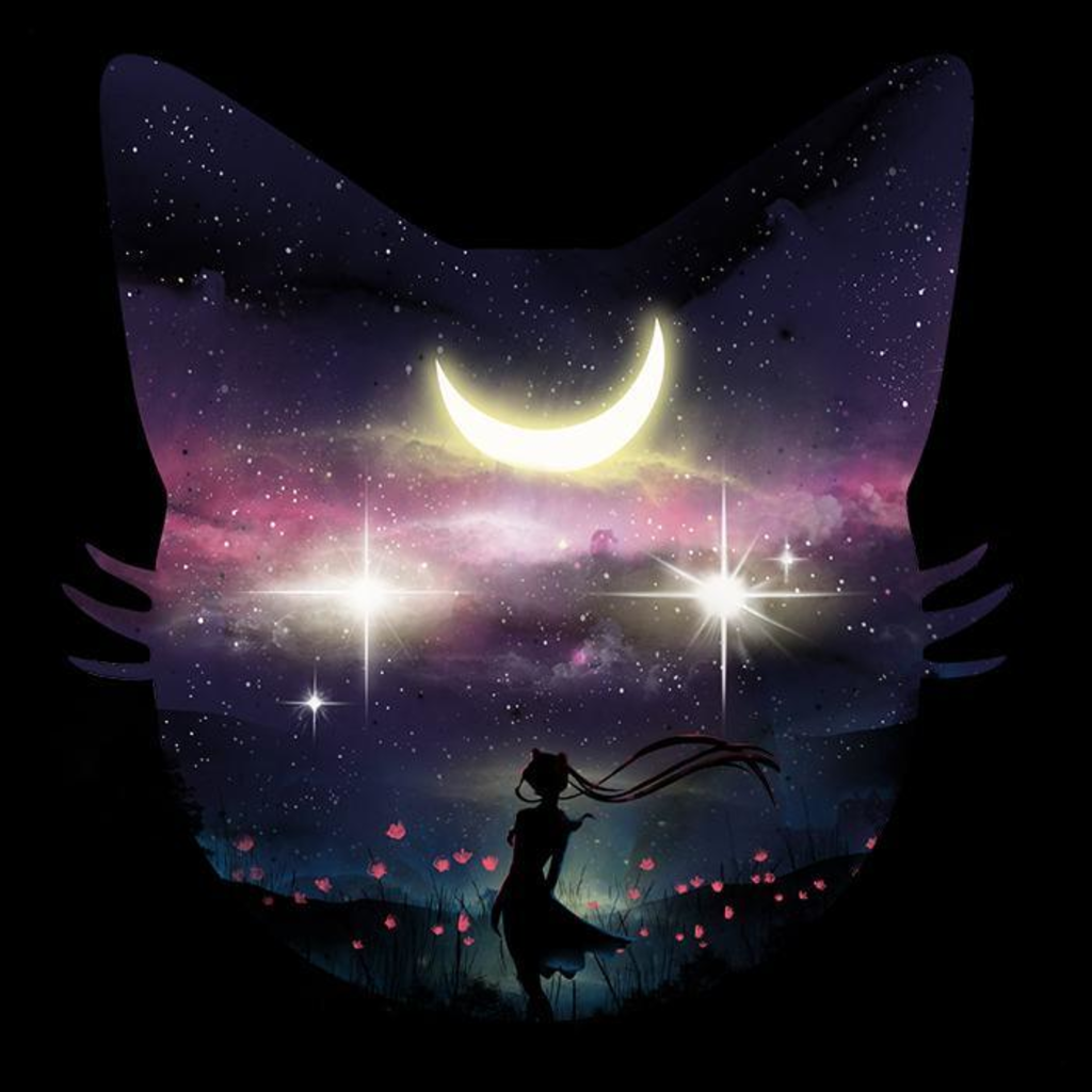 Once Upon a Tee: Moon and the Stars