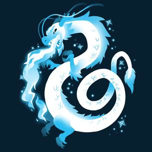 TeeTurtle: Ice Dragon