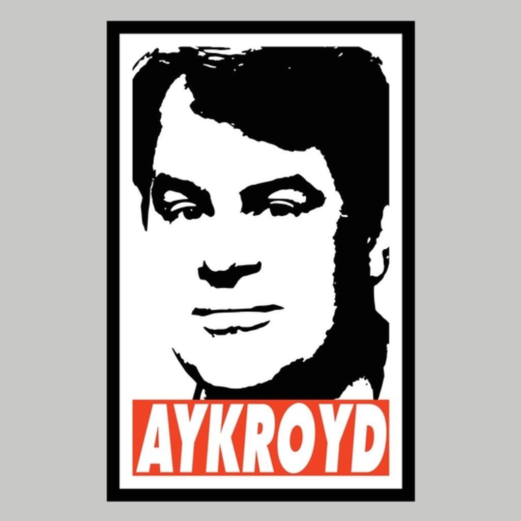 BustedTees: Dan Aykrod Tribue