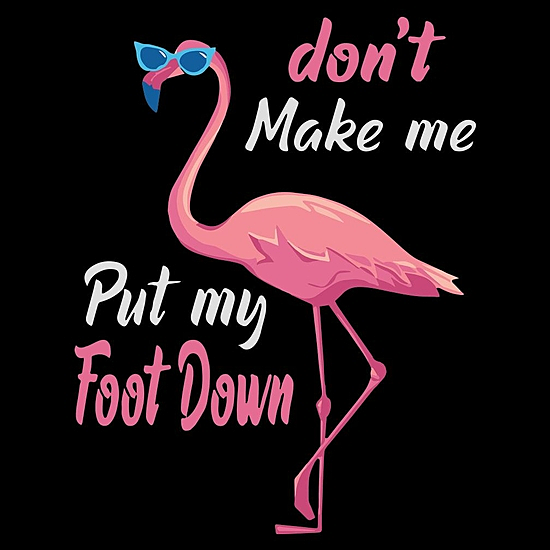 BustedTees: Don't Make Me Put My Foot Down Summer T-Shirt