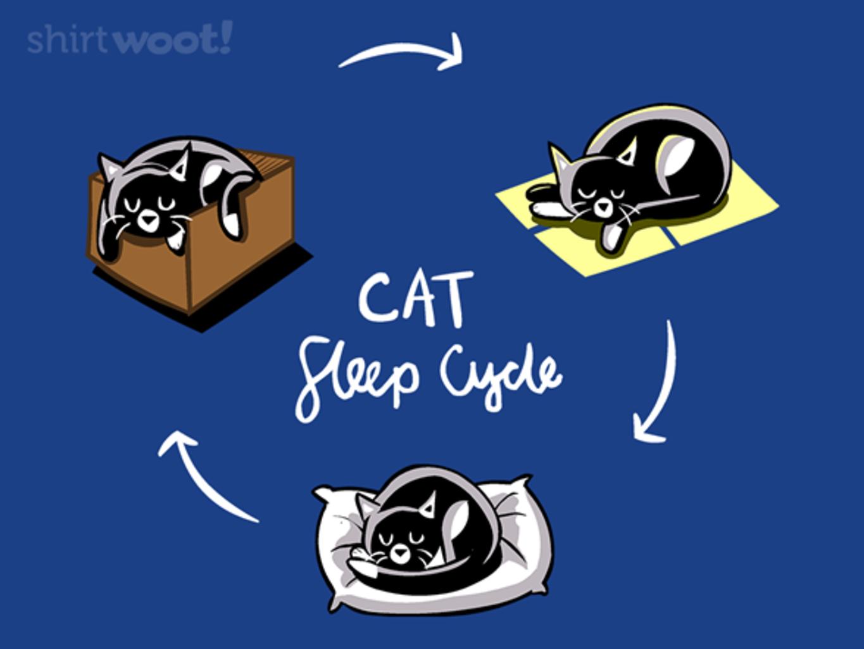 Woot!: Kitty Sleep Cycle
