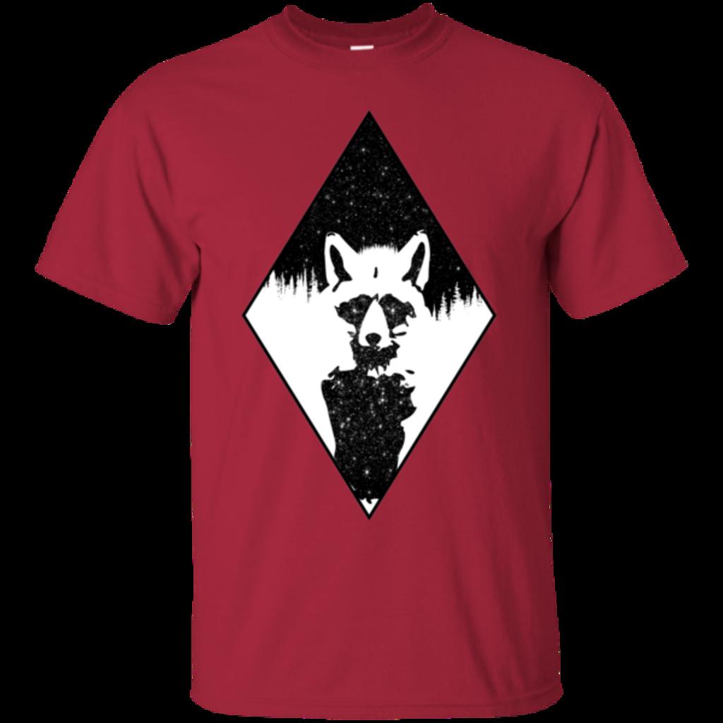 Pop-Up Tee: Starry Raccoon