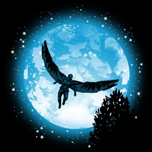 NeatoShop: Moon Falcon
