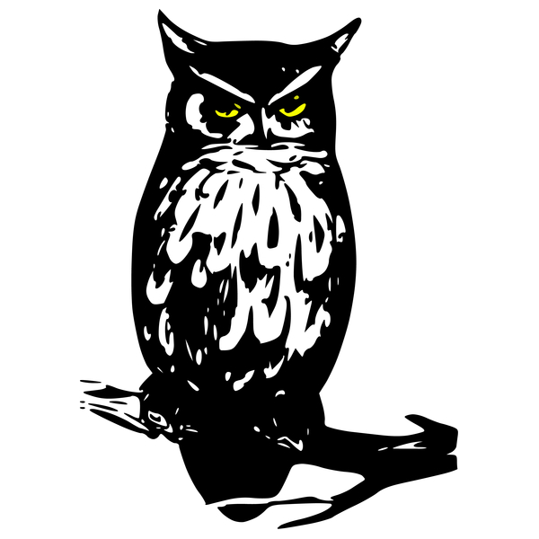 NeatoShop: Owl from da forest