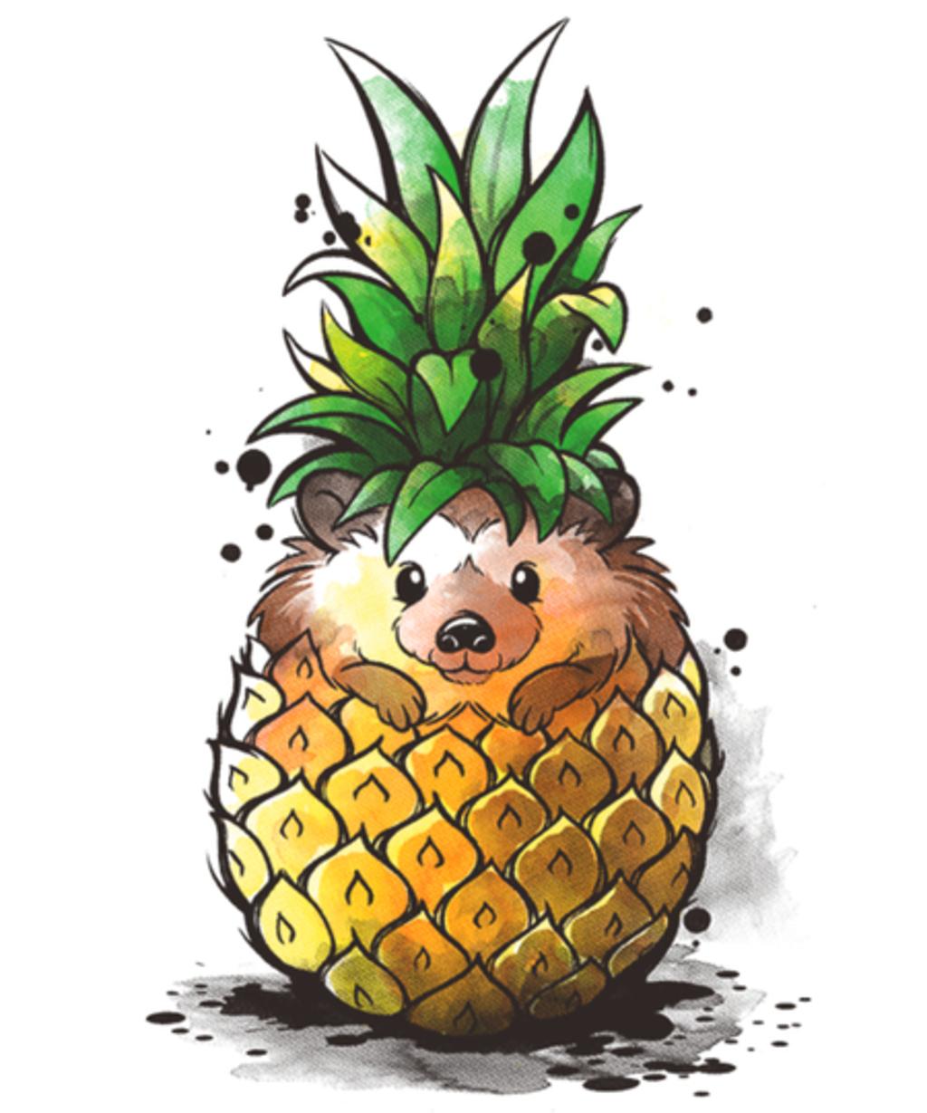 Qwertee: Pineapple hedgehog