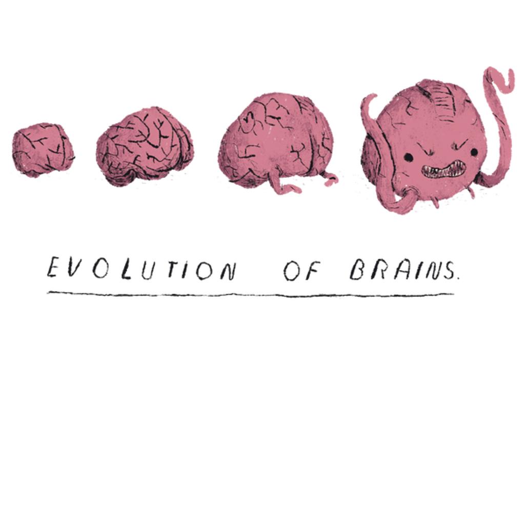 NeatoShop: evolution of brains