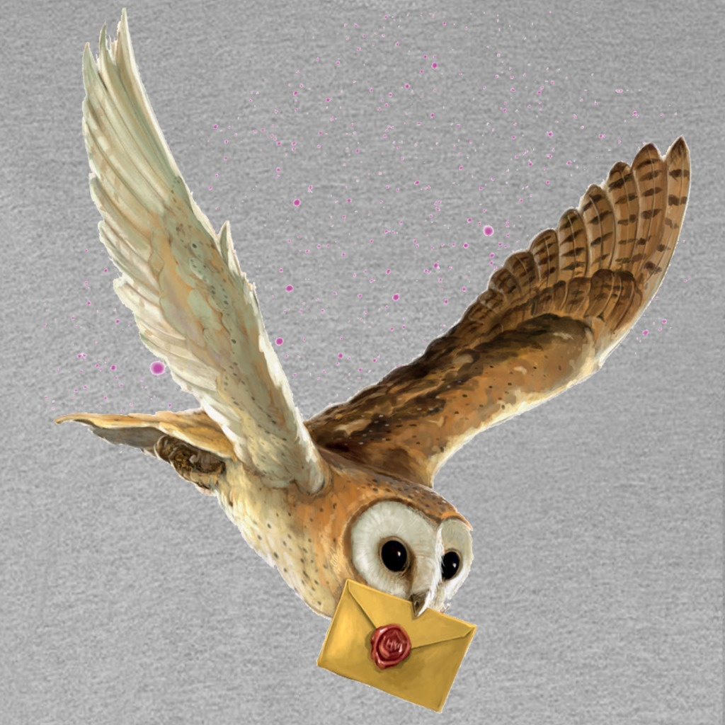 TeeBusters: Letter for Hogwarts