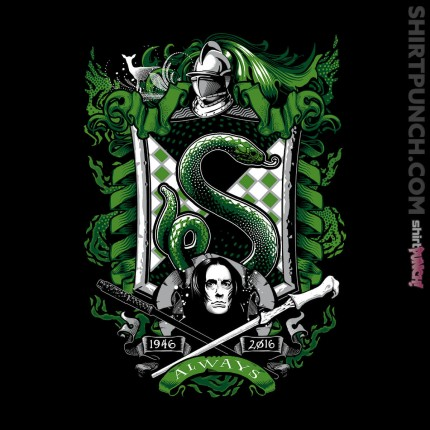 ShirtPunch: Slytherin House (shirt only)