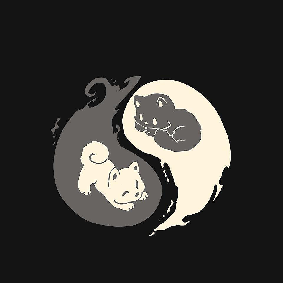 TeeFury: Yin and Yang