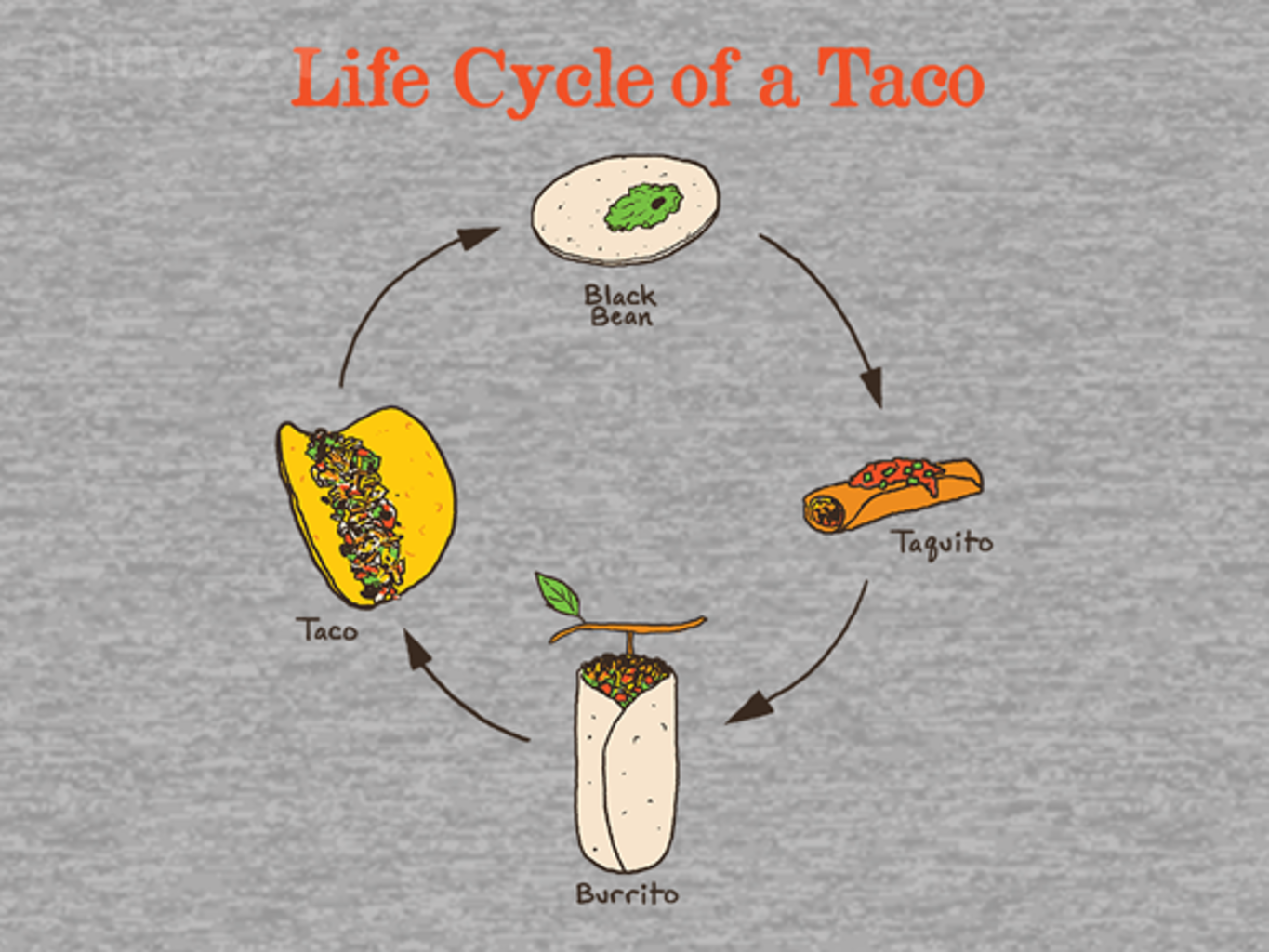 Woot!: Life Cycle of a Taco