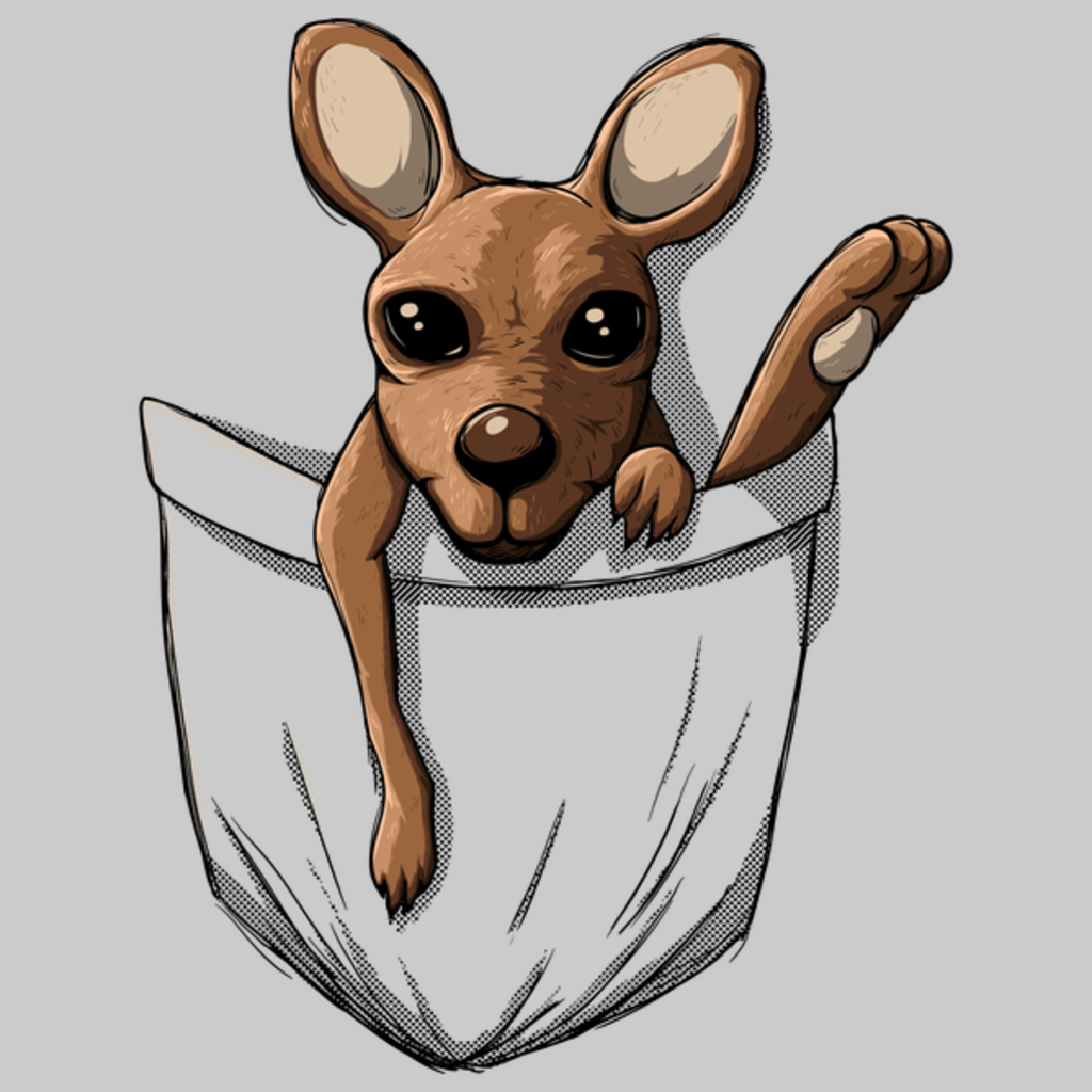 NeatoShop: Kangaroo