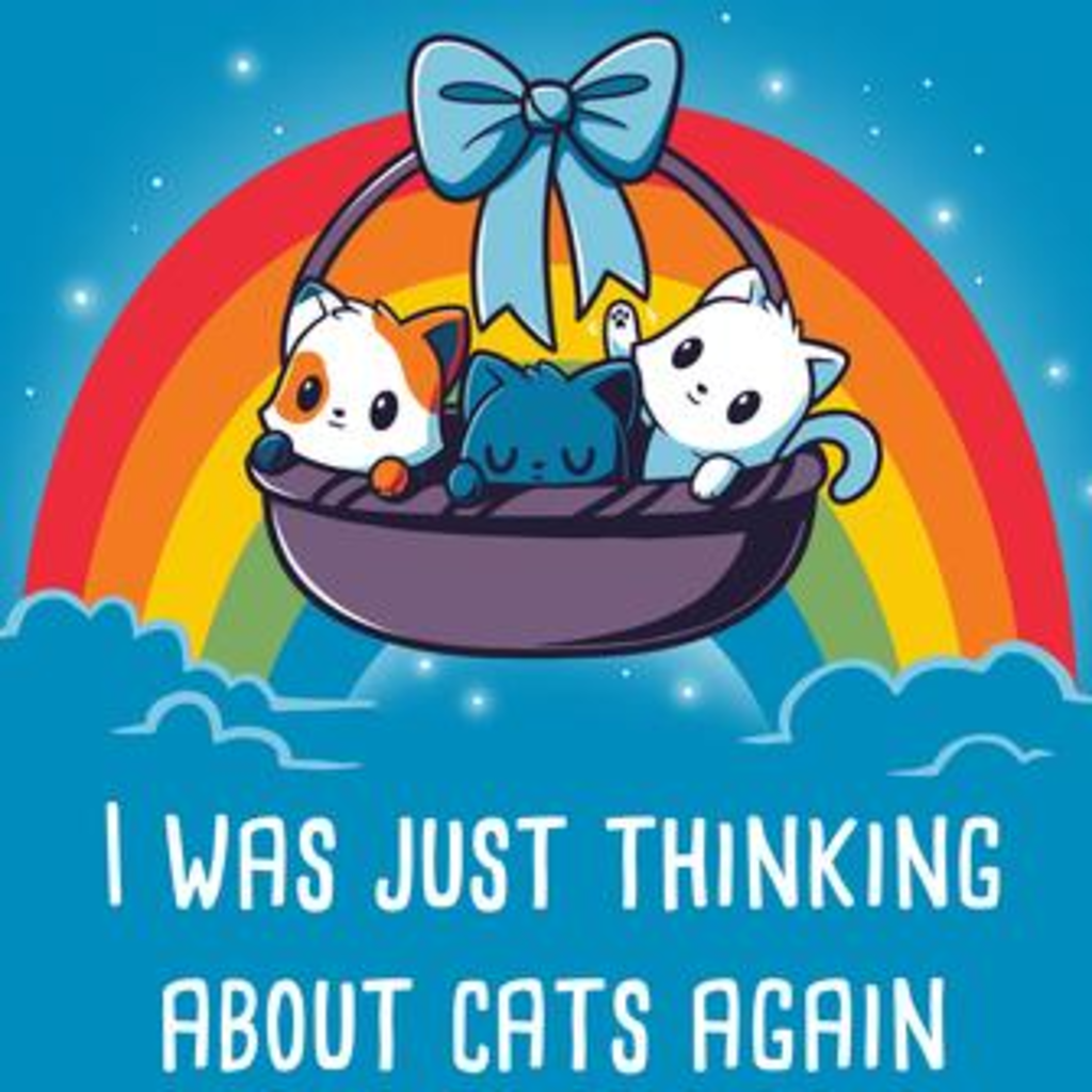 TeeTurtle: Thinking About Cats