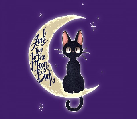 TeeFury: I Love You to The Moon & Back