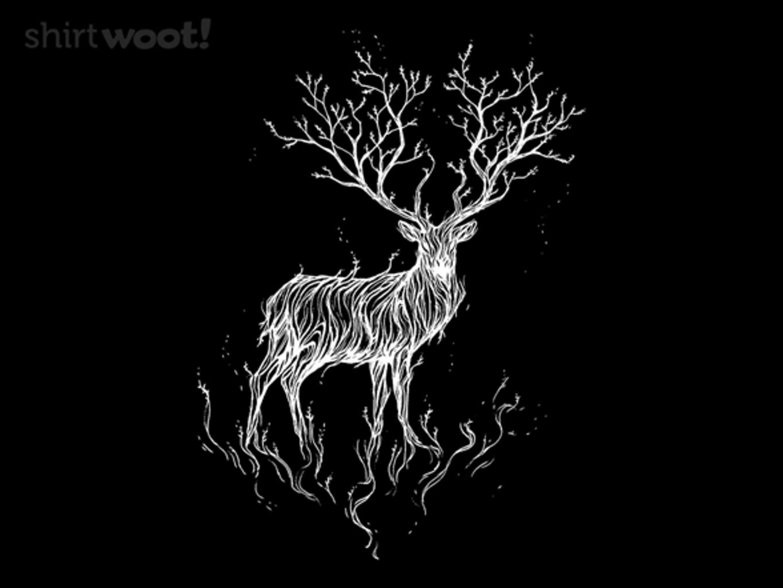 Woot!: Forest Spirit
