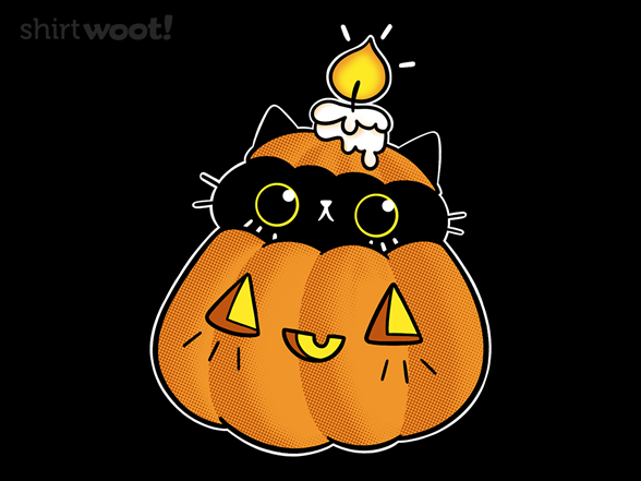 Woot!: Pumpkin Black Cat