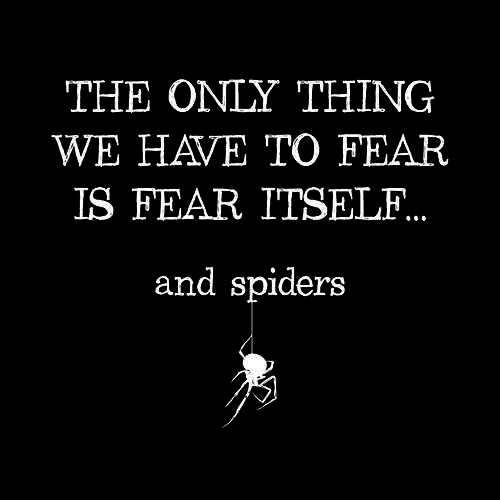 Five Finger Tees: The Only Thing We Have To Fear Is Fear Itself, And Spiders T-Shirt