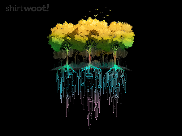 Woot!: Connection Forest