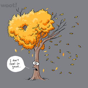 Woot!: Casualty of Autumn