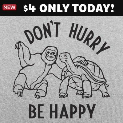 6 Dollar Shirts: Don't Hurry Be Happy
