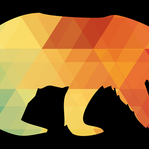 Design by Humans: Bear Harlequin