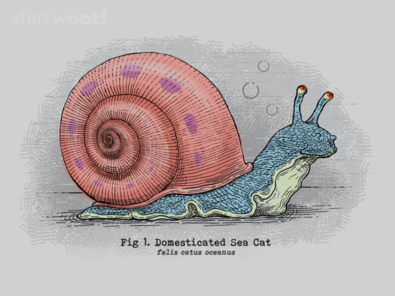 Woot!: Domesticated Sea Cat - $15.00 + Free shipping
