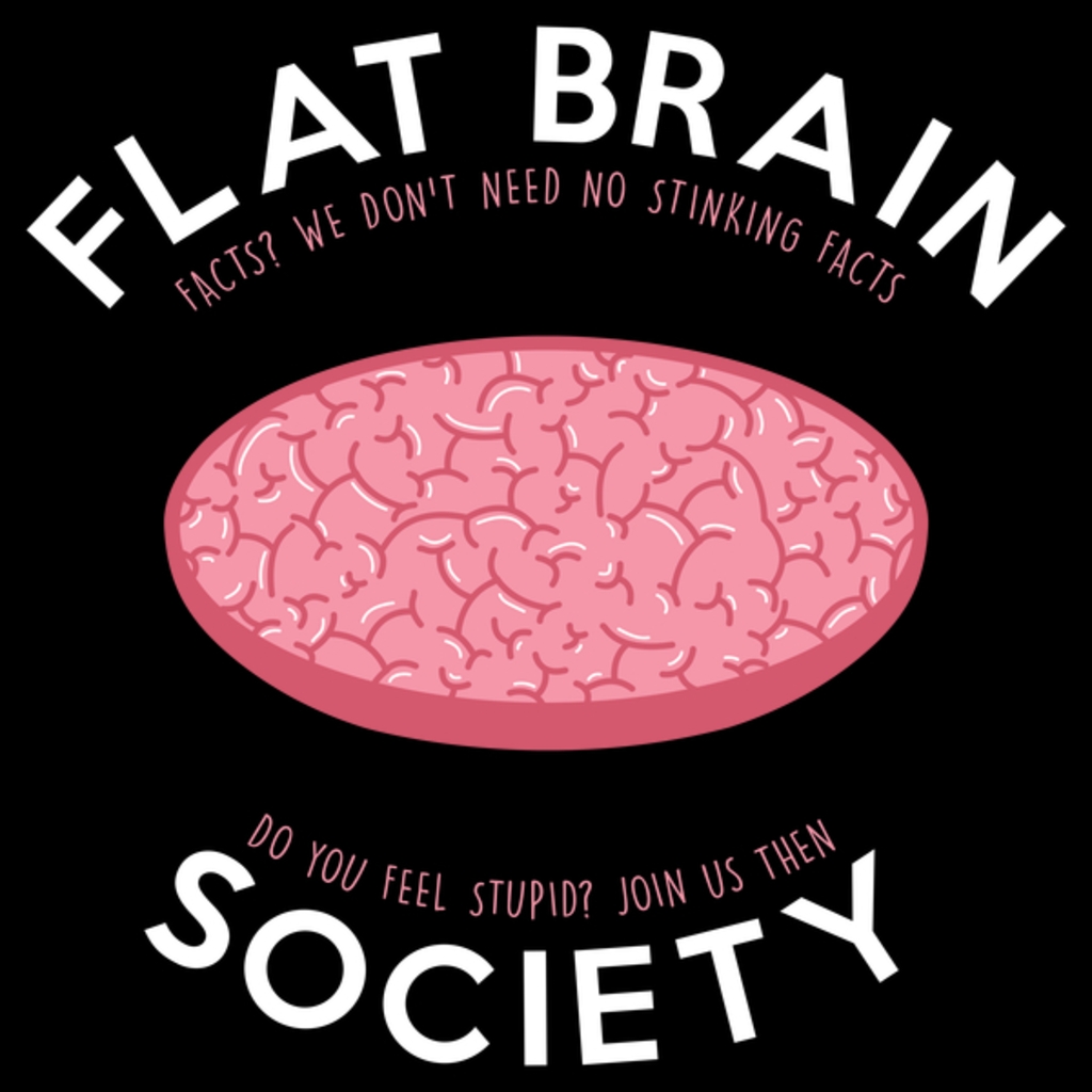 NeatoShop: Flat brain society