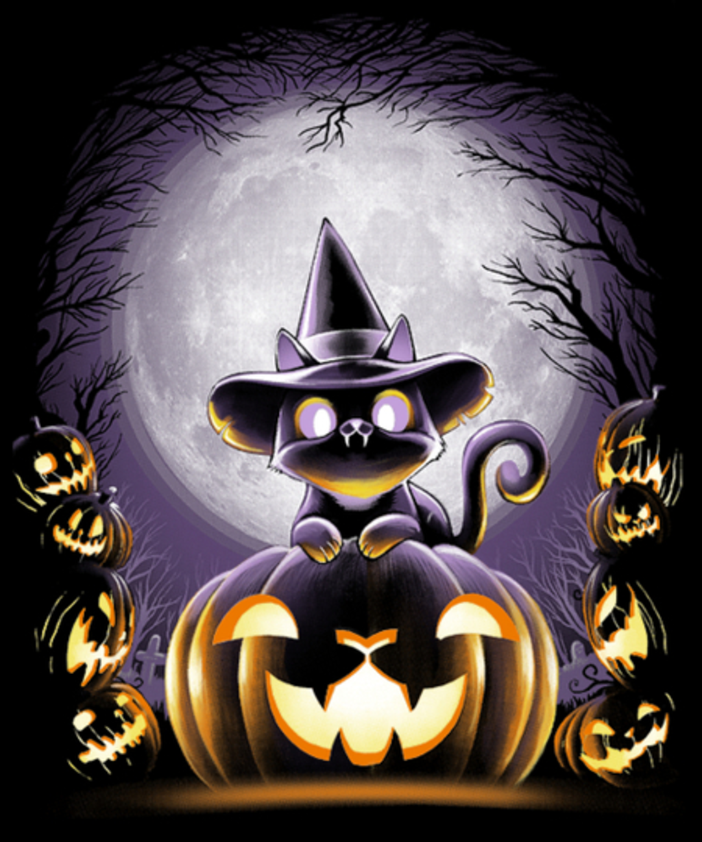 Qwertee: Witch-Cat-Night