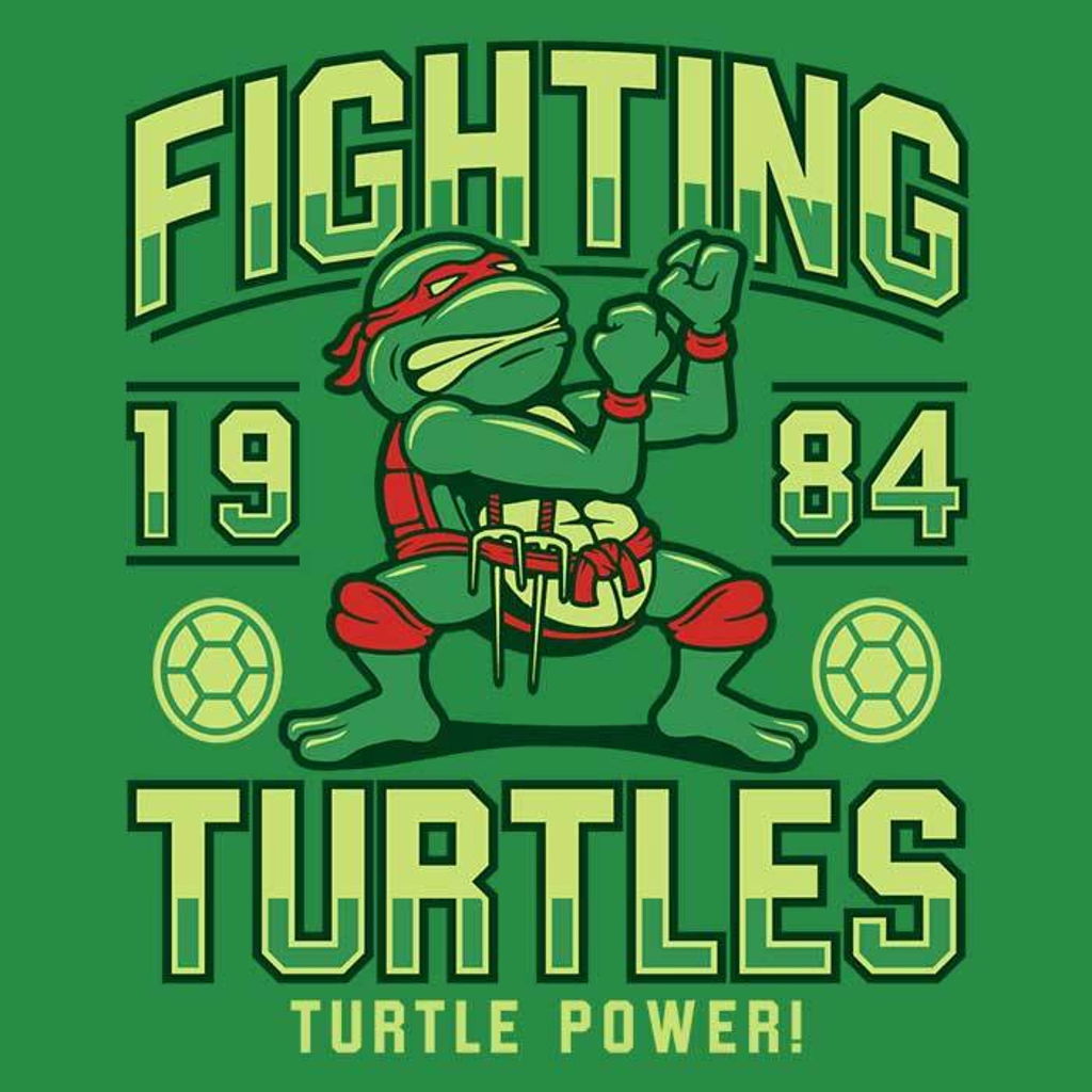 Once Upon a Tee: Fighting Turtles