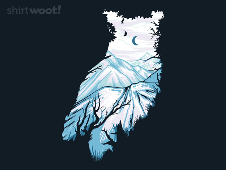 Woot!: Wild Owl
