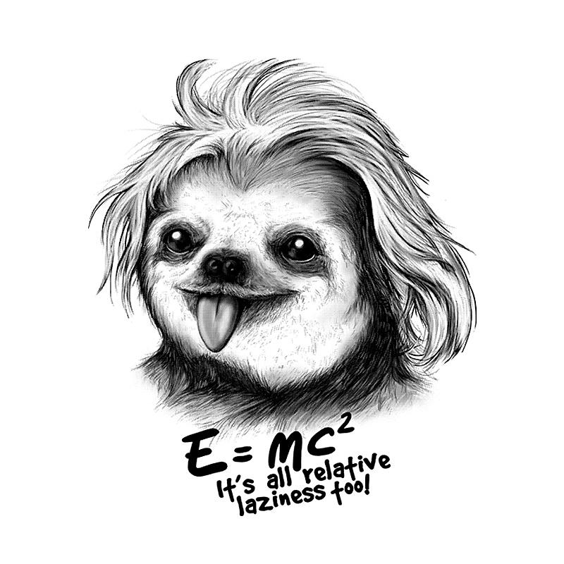 Pampling: Sloth Einstein