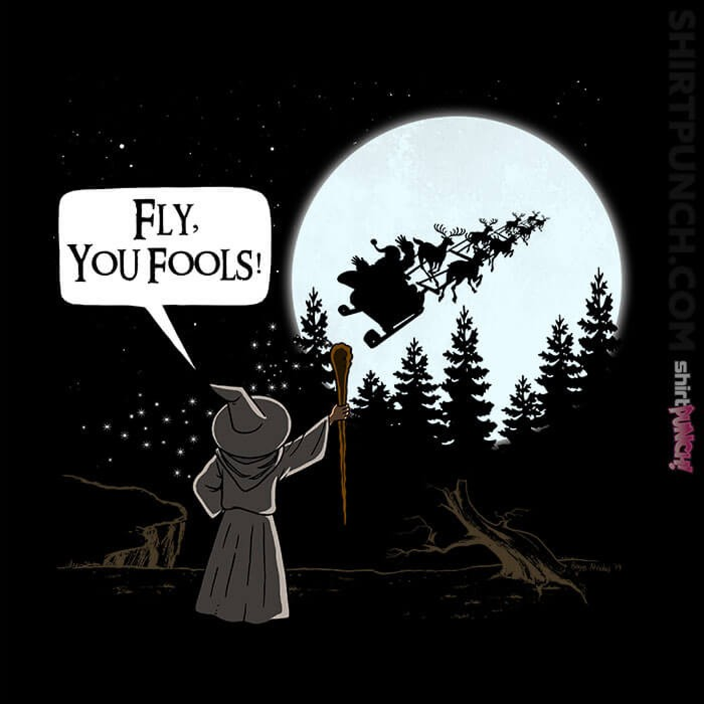ShirtPunch: Fly you fools!