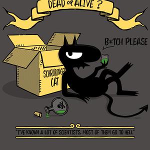 Qwertee: Schrödinger's Demon