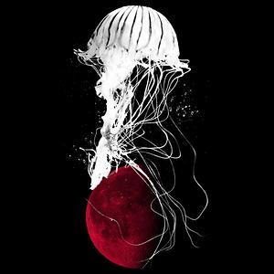 NeatoShop: Medusa Moon