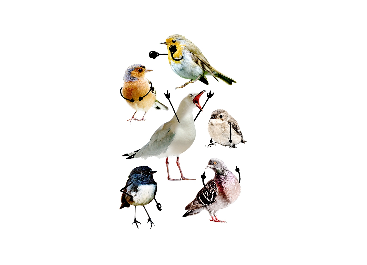 Threadless: Birds with Arms