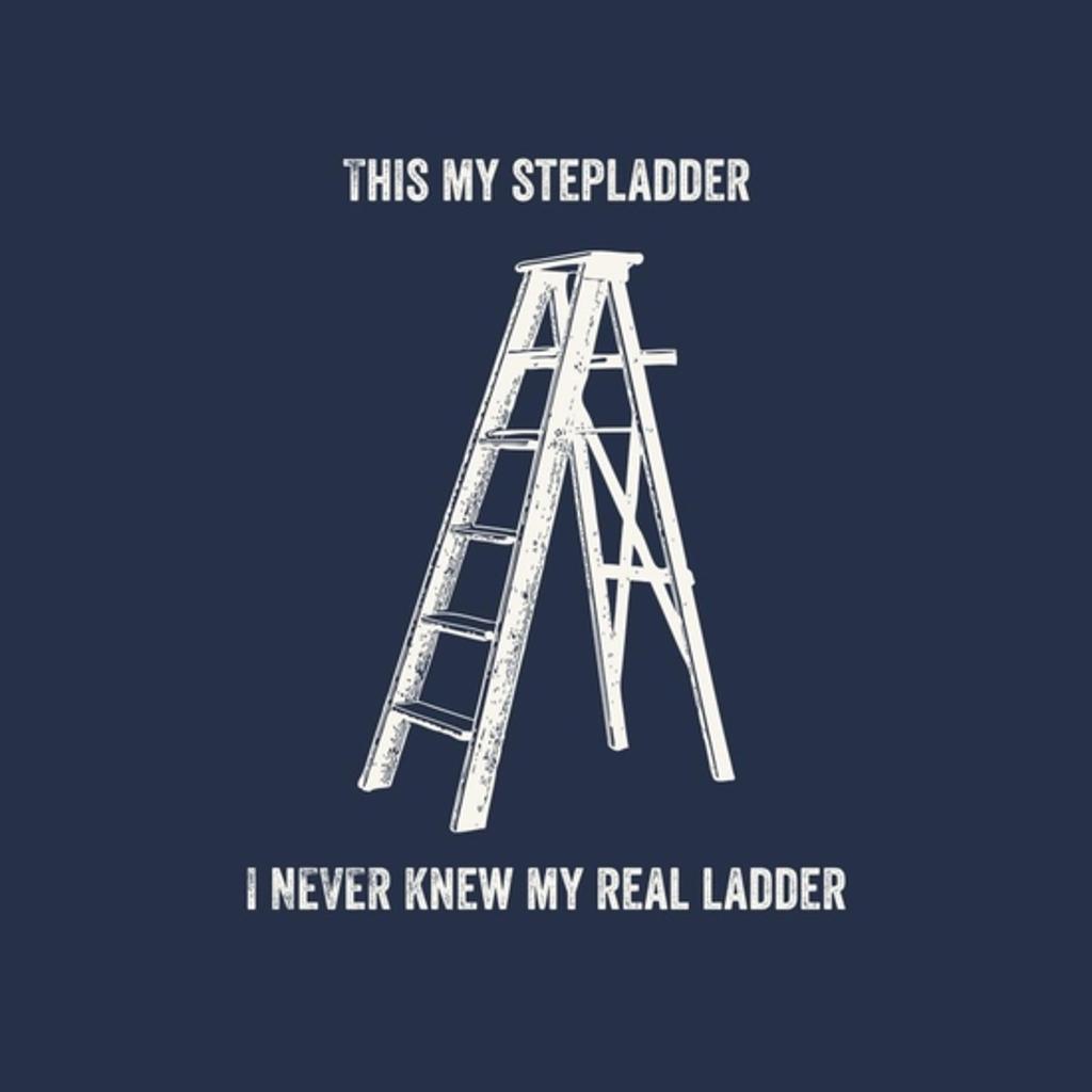 BustedTees: Stepladder