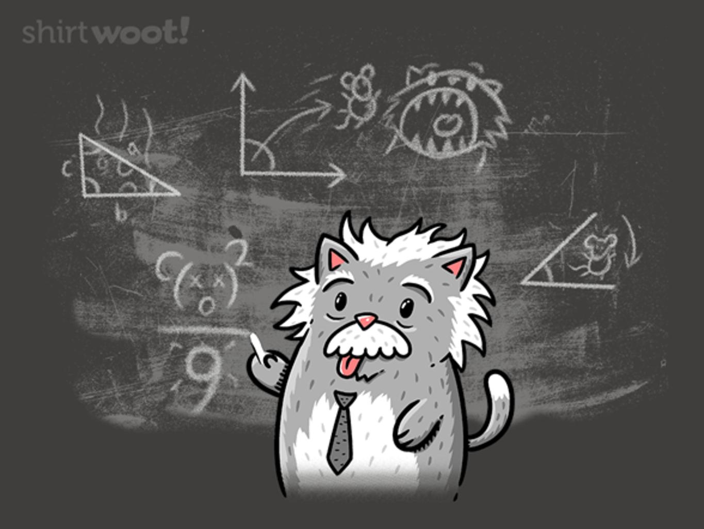 Woot!: Albert Catstein
