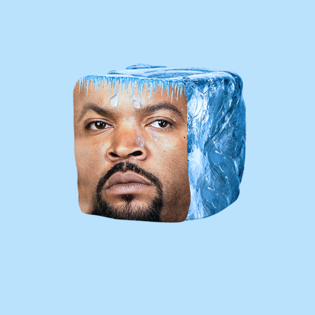 NeatoShop: Ice Cube