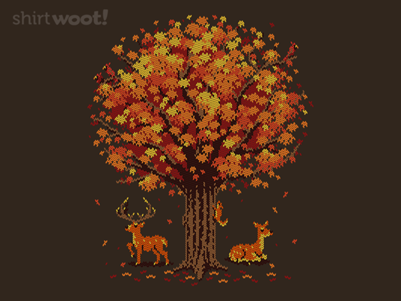Woot!: Sweater Season