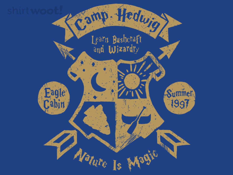 Woot!: Camp Hedwig Eagles