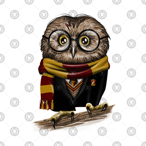 TeePublic: Owly Potter